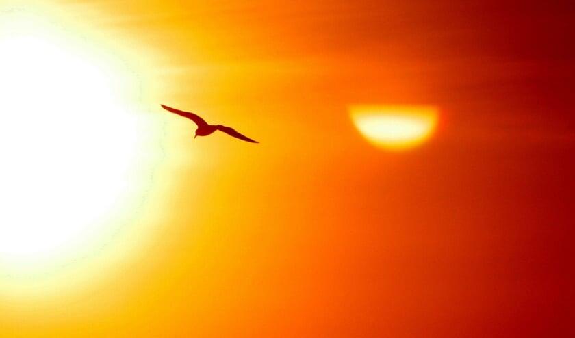 <p>zon-zonne-energie-zonnepanelen</p>