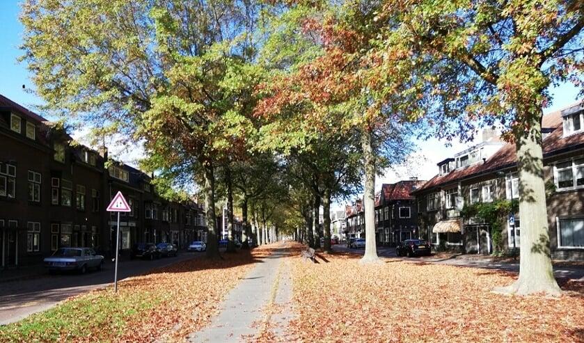 De herfst komt er aan. Door het droge weer van de afgelopen weken is de bladval al gestart.