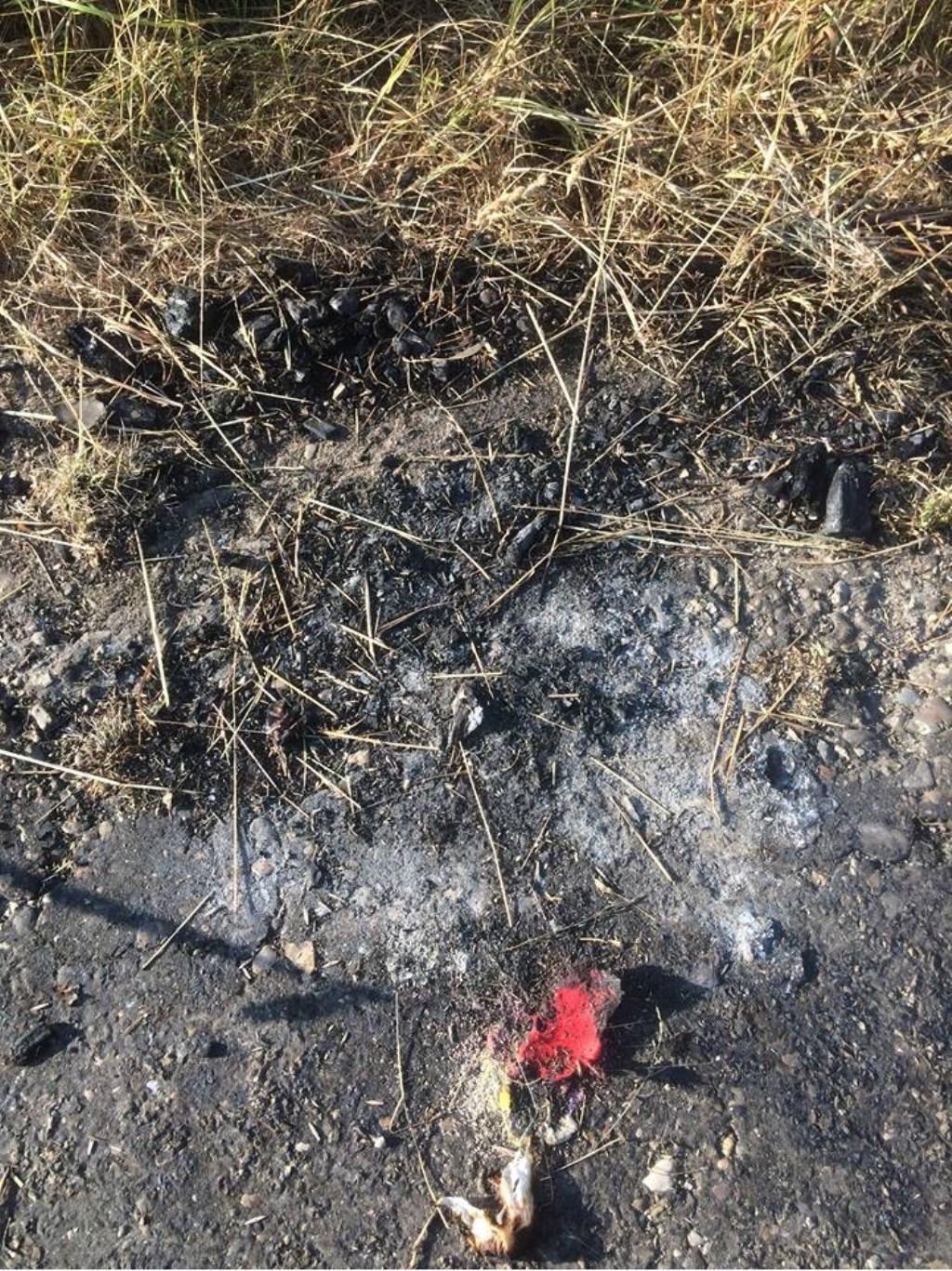 Resten van een vuur in de Vierde Boezem. Foto: BredaVandaag © BredaVandaag