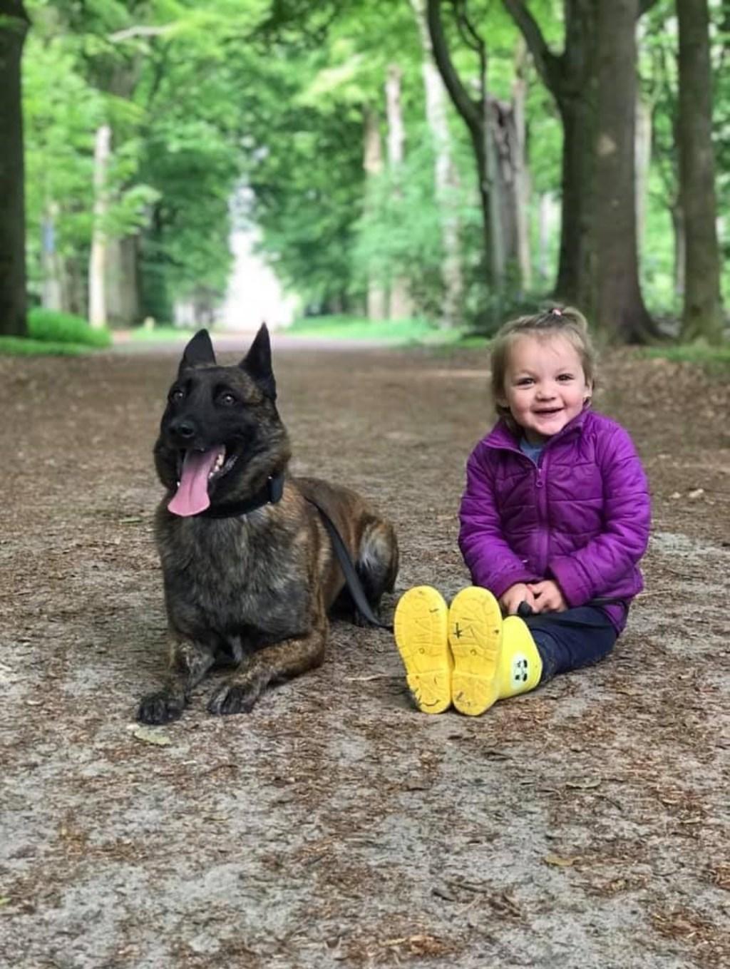 Xtreme is vriendjes met iedereen klein of groot maakt hem niet uit! Xtreme is een Hollandse Herder en 4 jaartjes oud. Foto: Martijn Verhaegen © Internetbode