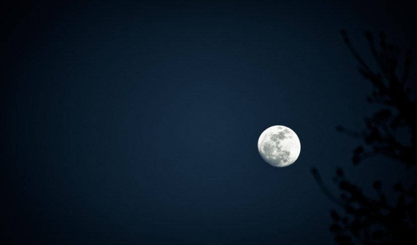de-maan-large