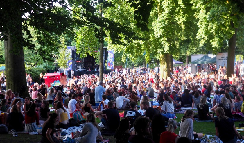 Een vol park tijdens de Handsome Poets op 30 juli.