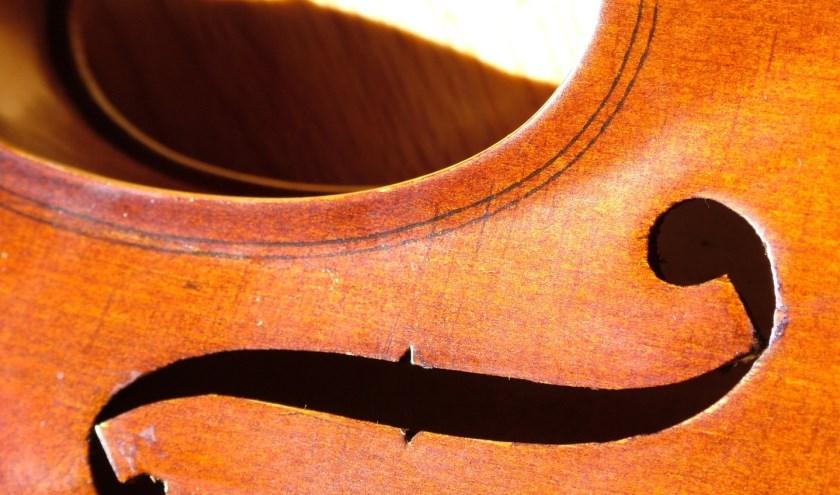 viool-large