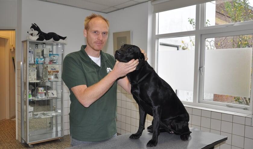 <p>Dierenarts Marnix Snijder onderzoekt zijn labrador</p>