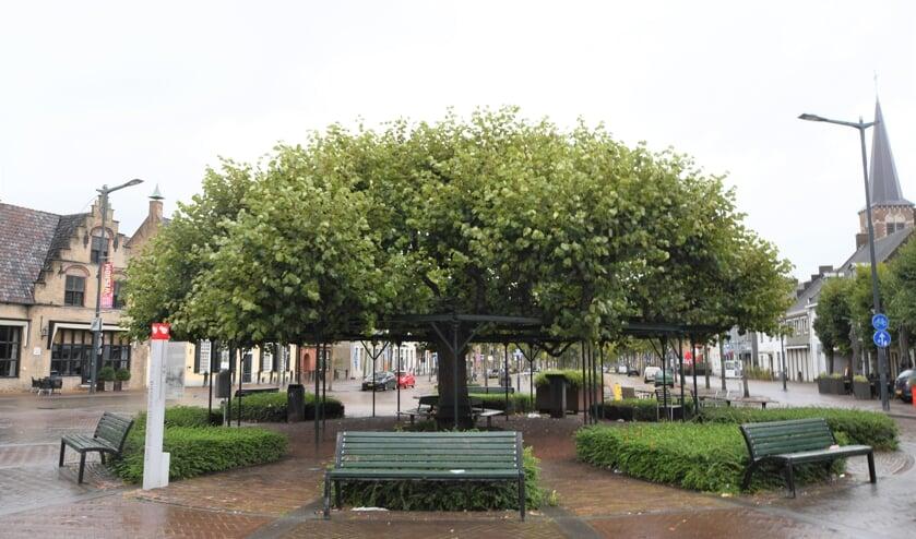 <p>De Moeierboom is geen moerbeiboom, maar een linde.&nbsp;</p>