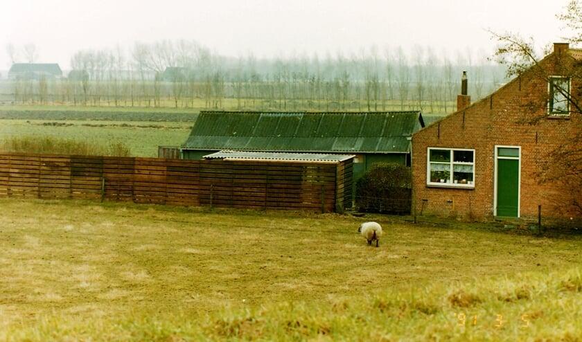 <p>Wie kent deze boerderij in buitengebied Tholen.</p>