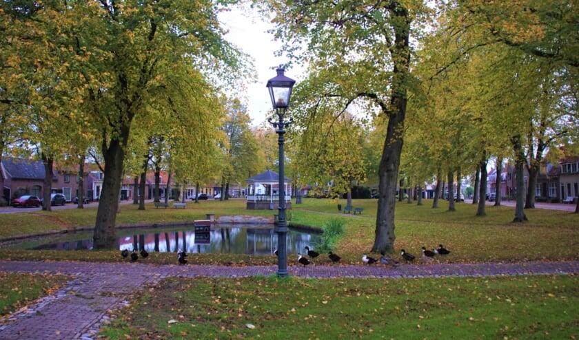 <p>Lezer Piet Grim maakte deze foto van het Dorpsplein in Nisse in herfstkleuren.</p>