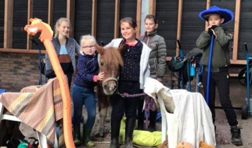 <p>Alle geslaagde Pony Power kids met pony Hettie. FOTO SASKIA NAGTEGAAL</p>