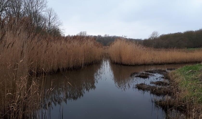 Een toekomstvisie voor het Nollebos en Westduinpark is in de maak.