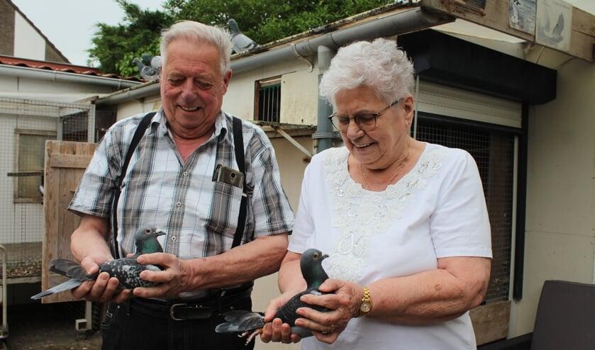 Het is iedere keer weer spannend als de duiven uitvliegen voor Dirk en zijn vrouw.