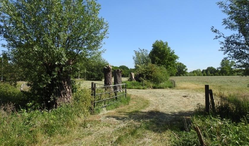 Het is momenteel gunstig weer om bijvoorbeeld gras tot hooi te laten drogen