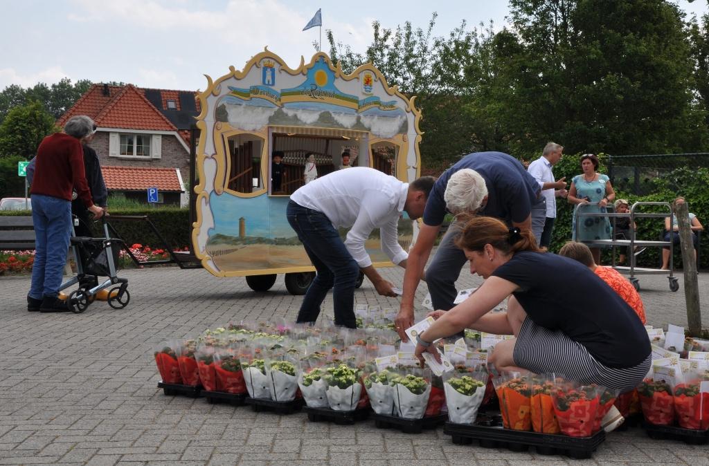 Plantjes worden bezorgd door vrijwilligers van Rotary Club Walcheren Foto: Aart Bos © Internetbode
