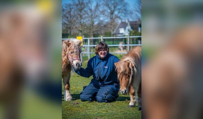 <p>Marlinda Hommel met de shetlanders, naast de ezels haar favoriete dieren.</p>