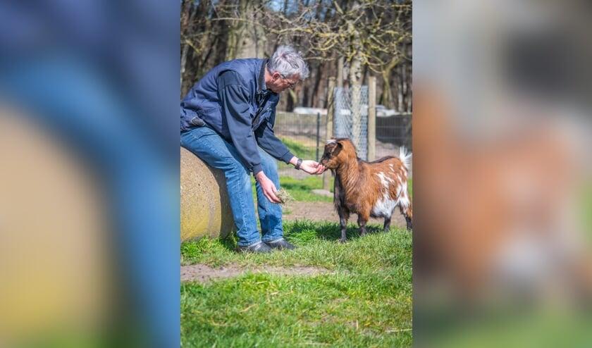 <p>Vrijwilliger Henk de Krom bij een geit op kinderboerderij De Leijhoeve.</p>